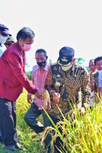 Libatkan Lembaga Perbankan, Pemkab Wajo Dorong Petani Kembangkan Pertanian Terpadu